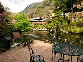 箱根湯本温泉に約一万坪の庭園!吉池旅館は美食と自家源泉の名宿|神奈川県|トラベルjp<たびねす>