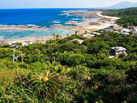 子宝と長寿の島の遺産とパワスポを巡る!徳之島の魅力を一挙紹介