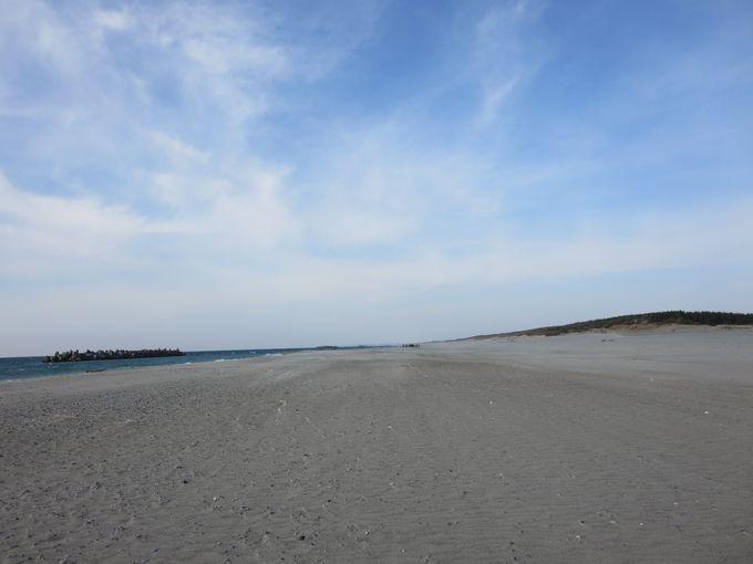 広大な砂浜。