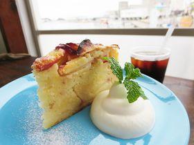 もちふわ「ミサキドーナツ」に漁港前の「雀家」まで、三浦三崎はマグロだけじゃなくカフェも充実!|神奈川県|トラベルjp<たびねす>
