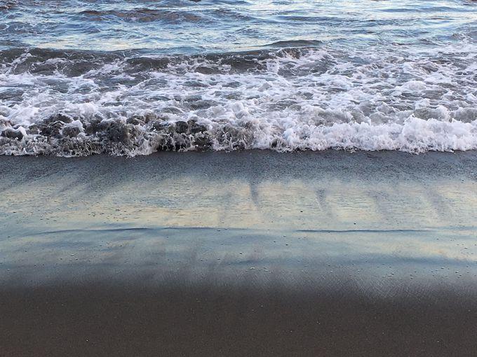 人もワンコも楽しめる砂浜