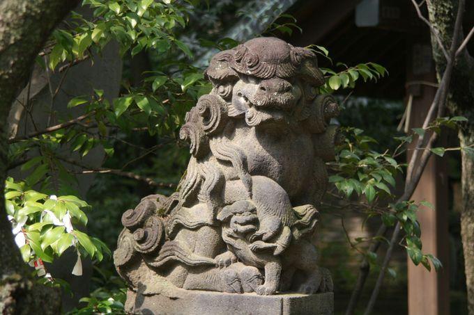表参道と合流してすぐに、またまた一対の江戸狛犬。