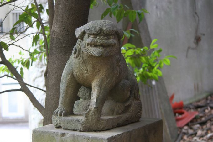 狛犬は他に境内社の稲荷神社前にも一対。