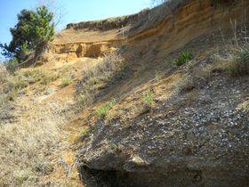 13万年前は海底!千葉印西「木下貝層」で万葉集を紐解く?|千葉県|トラベルjp<たびねす>