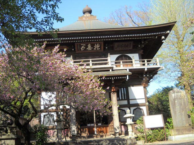 「長禅寺」の三世堂(茨城県指定文化財)