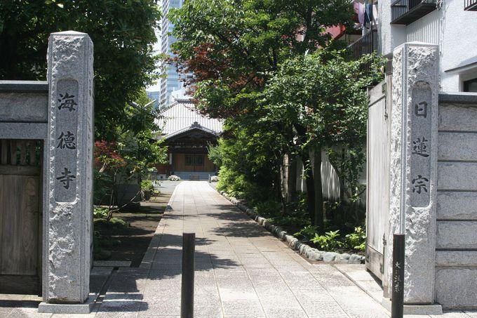 心が洗われる境内の美しい日蓮宗「海徳寺」