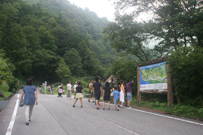 駐車場から1.3 km〜滝をめざして徒歩約30分