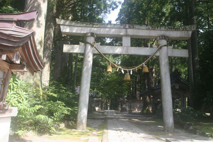 大きな石鳥居は、聖なる時空への入口