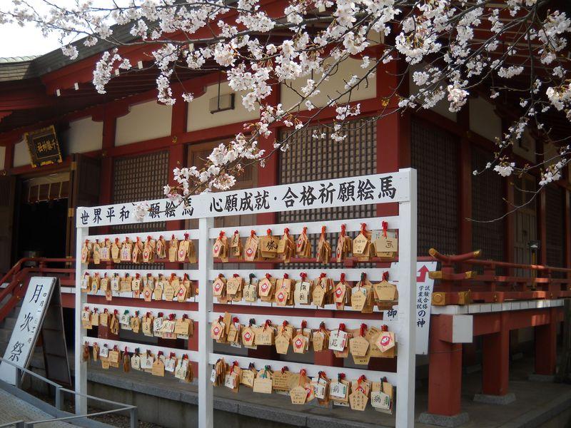 学業成就の神様が、御座します!茨城・つくば市「千勝神社」