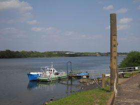 船で利根川を渡れば季節が見える!茨城・取手「小堀の渡し」|茨城県|トラベルjp<たびねす>
