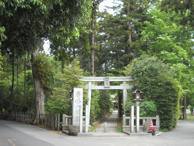 まっすぐな表参道の正面に拝殿を望めば・・・