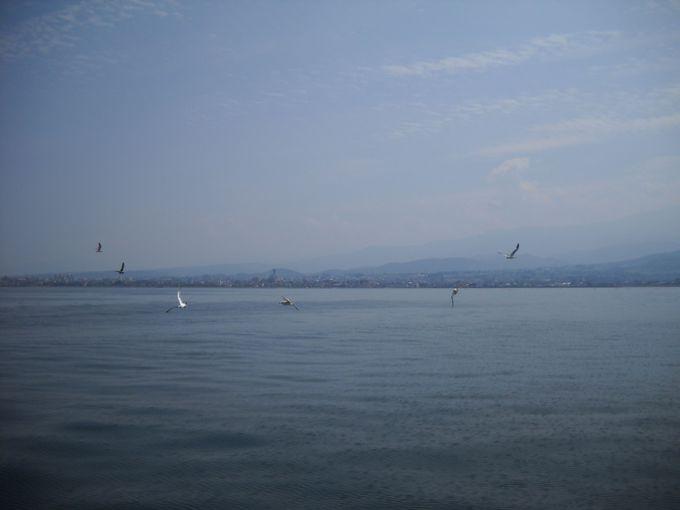 自然の生け簀とも呼ばれる「富山湾」を満喫!