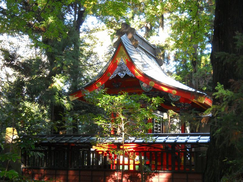 千葉で「京都伏見稲荷」に参拝?印西市・竹袋稲荷神社