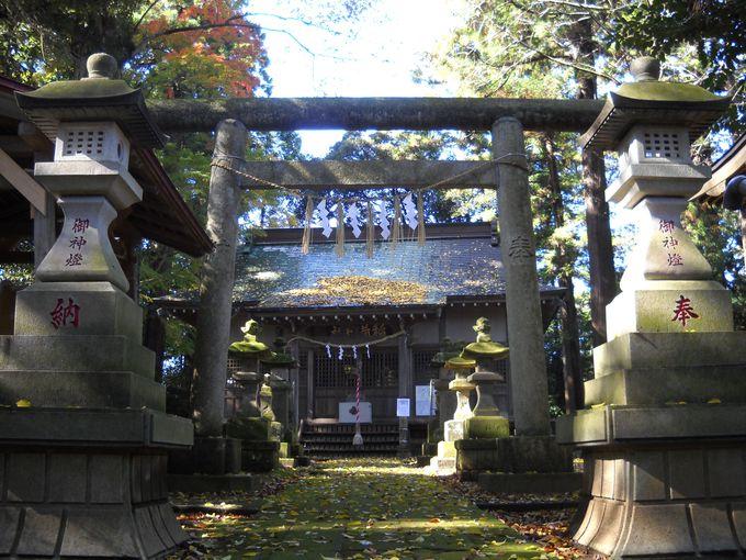 「石灯篭」を過ぎ「鳥居」をくぐれば、拝殿