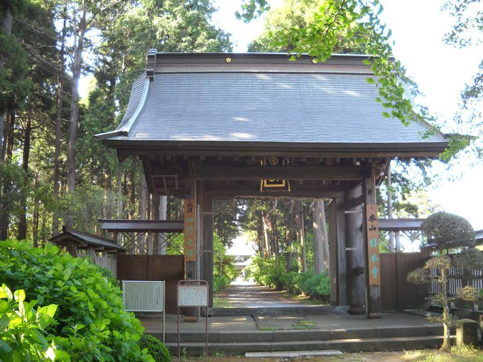 千葉・多古町「日本寺」へ!野鳥たちの声に癒されに行こう