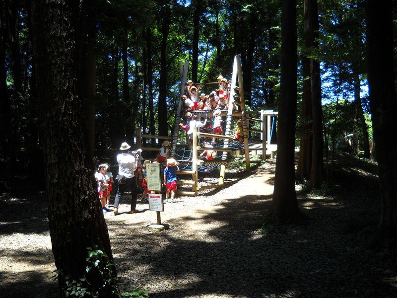 千葉・柏「手賀の丘公園」子連れでアスレチックに挑戦!