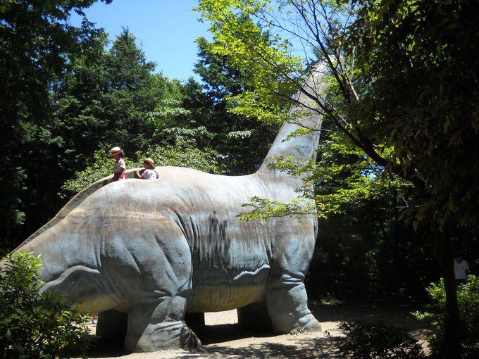 ぼくは「ケティオザウルス」って言うんだよ!