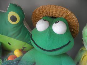 かえる!カエル!蛙!無事帰る!東京・船堀「法龍寺」|東京都|トラベルjp<たびねす>