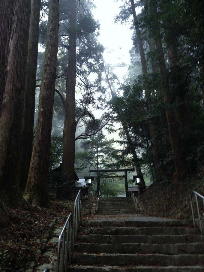 荘厳という表現がぴったりな天岩戸神社の東本宮