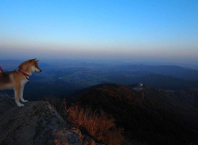 午後から山頂を目指します