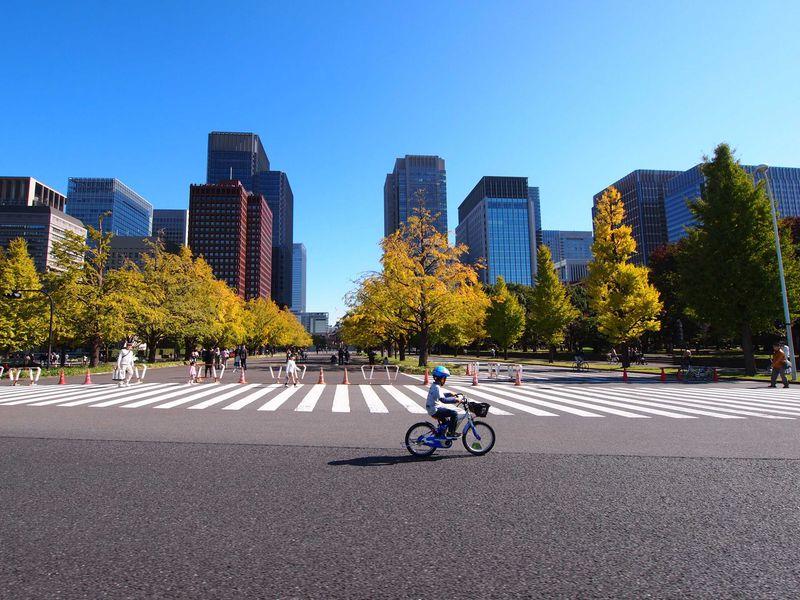 丸の内摩天楼を走る!!毎週日曜開催「パレスサイクリング」