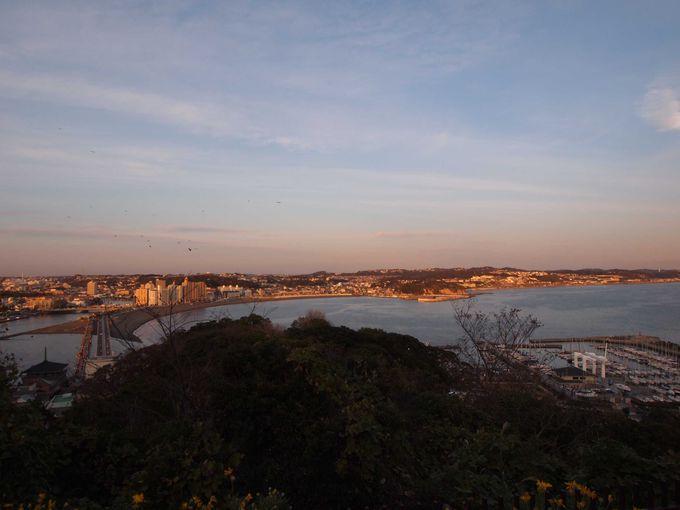 夕暮れのピンク色に輝く対岸の海岸線