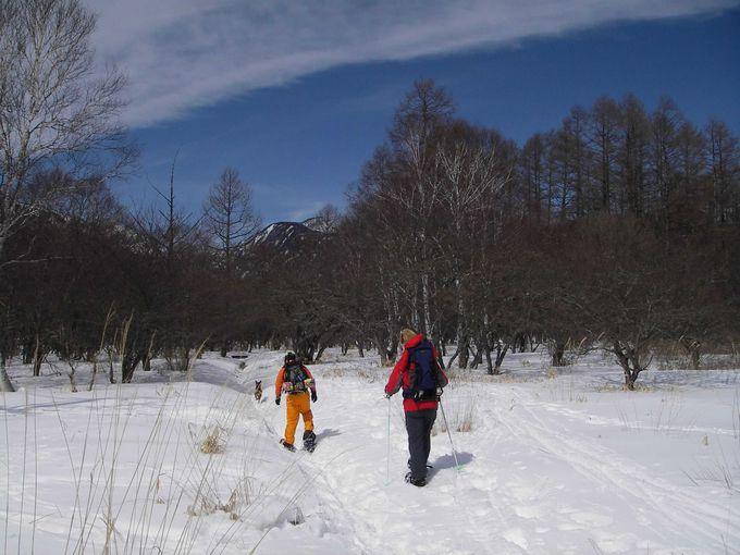 さっそくスノーシューで雪原へ