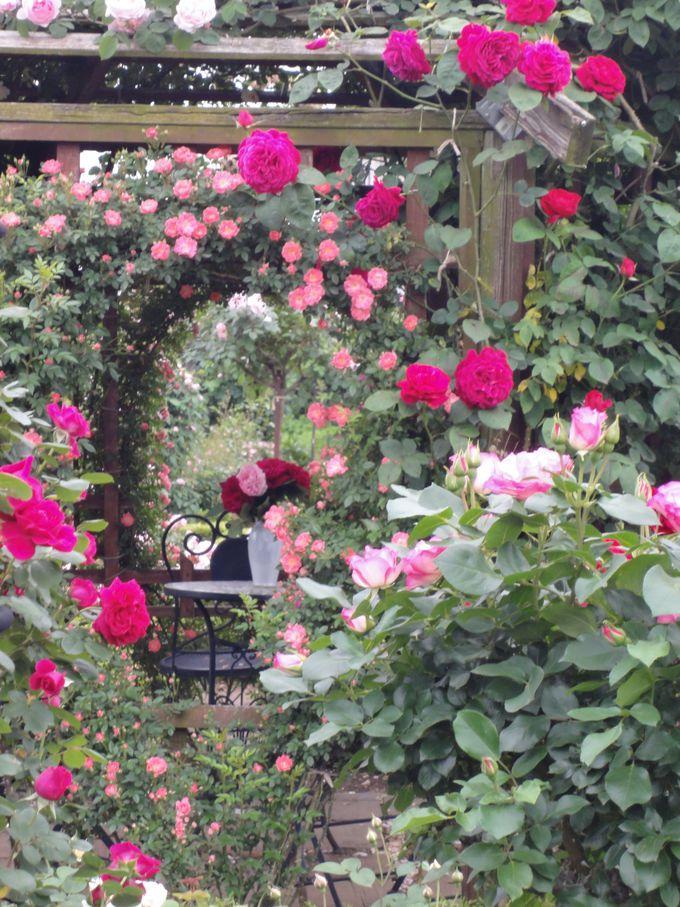 絵画のような庭園