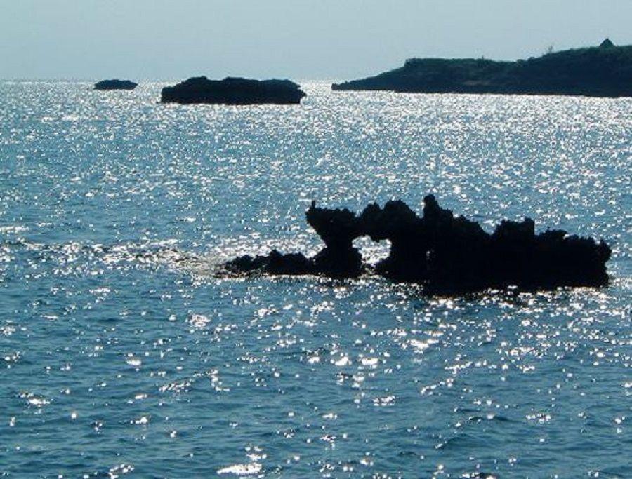 可愛いぃフォルムのハートの海