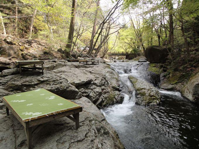 森の中でくつろぎたい方はココ 小太郎茶屋