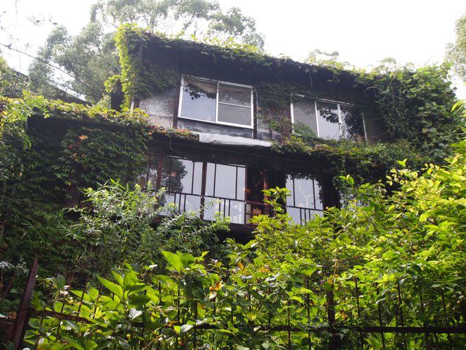 尾道観光で外せない「坂道散策・隠れ家カフェ」