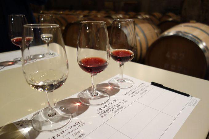ワンコイン500円でワインのたしなみを学ぶ