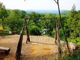 ハイブリッド型テーマパーク!栃木県「ツインリンクもてぎ」は宿泊して楽しみたい|栃木県|トラベルjp<たびねす>
