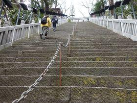 傾斜40度86段!!出世の階段を登ってお参りしたい「愛宕神社」|東京都|トラベルjp<たびねす>