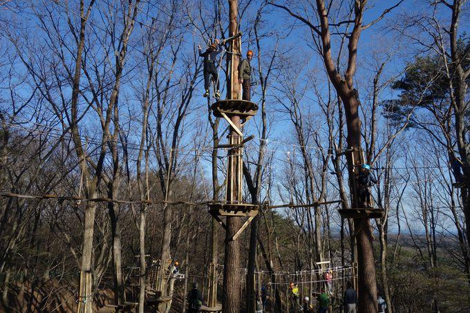 全8コース66エレメント!!日本最大級の樹上アスレチック「NOZARU」