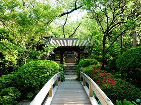 都会の真ん中で潤いチャージ!!「グランドプリンスホテル高輪」で叶う緑に包まれる癒しの滞在|東京都|トラベルjp<たびねす>