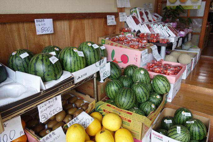 これはお買い得!!土産に茨城県産の旬の新鮮野菜と果物