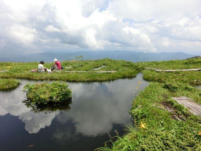 池塘(ちとう)散策はまさに雲上散歩!