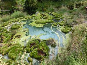 心も身体もデトックス!八が岳山麓の秘湯「唐沢鉱泉」|長野県|トラベルjp<たびねす>
