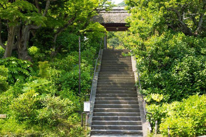 駆け込み寺、縁切り寺といわれた「東慶寺」
