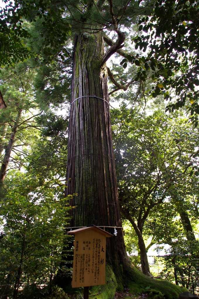 パワースポット、須佐神社