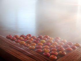 「星野リゾート 界 津軽」りんごづくしのおもてなし|青森県|トラベルjp<たびねす>