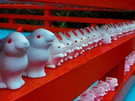 可愛いうさぎ神社で癒されよう!子宝祈願も有名な京都「岡崎神社」