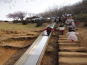小さな子供と楽しむ京都!厳選のおすすめ場所はココ!|京都府|トラベルjp<たびねす>