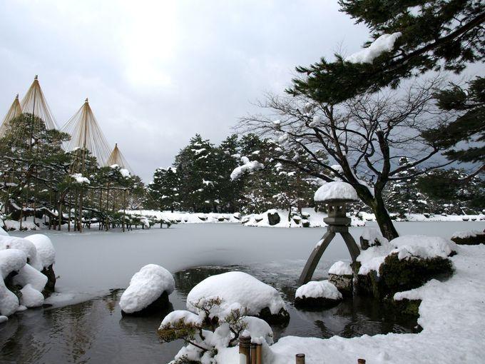 雪景色の兼六園!ここが必見ポイント