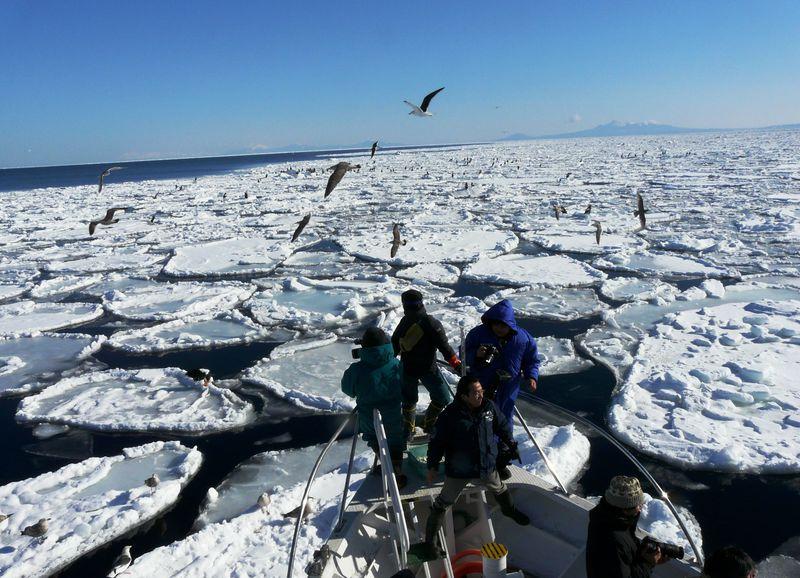 北海道・オホーツクの流氷をとことん楽しむ!! 最良スポットBEST4