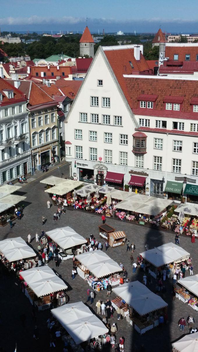 旧市庁舎の塔に上って、旧市街の中心部を見下ろしてみよう!
