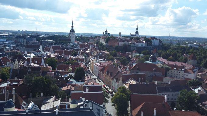 聖オレフ教会の塔から、山の手地区の建物を一望する
