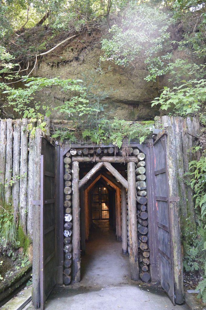 探検気分で巨大洞窟の酒蔵に潜入!