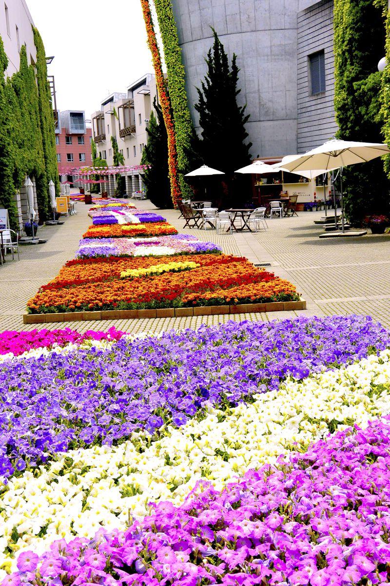 花の祭典とワインフェアで盛り上がる! GWからの「リゾナーレ八ヶ岳」へ
